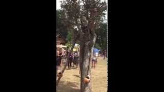 Cool living Ent style tree costume by Michael Shaffer spotted at the Oregon Country fair Video