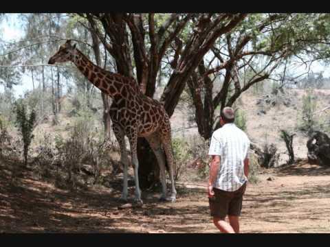 Kenia - Urlaub In Afrika | Ferienhaus Kenia | Kenia Safari Und Badeurlaub | Safari Kenia