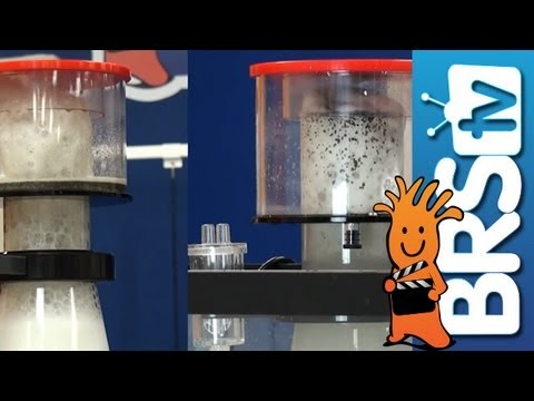 Protein Skimmers - EP 3: Aquarium Filtration