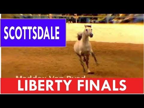 Scottsdale Arabian Show Finals Liberty Horses