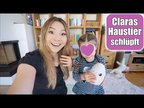 Claras neues Haustier