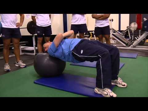 BokSmart   Physio ball exercises