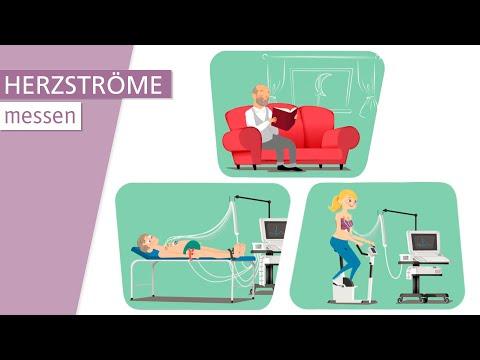 Was ist ein EKG? | Stiftung Gesundheitswissen