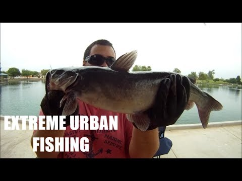 How To Catch Channel Catfish Using Hotdogs And Garlic Powder