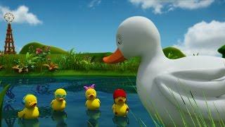 Nhạc Thiếu Nhi Chọn Lọc | Học Tiếng Anh | Five Little Ducks | vần cho bé