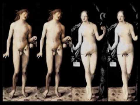 Albrecht Durer Adam And Eve Adam And Eve Albrecht d Rer