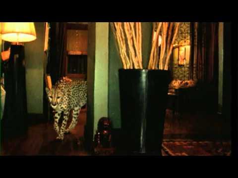 Panjabi Mc - Jogi video