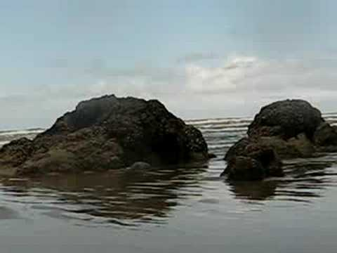 Cannon Beach Oregon / Pacific Ocean Video