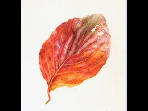 Autumn Leaves Painting Painting Watercolor Autumn