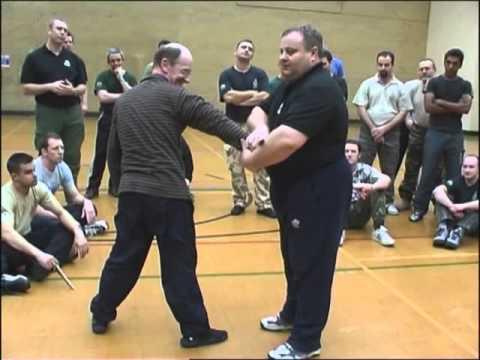 Systema London Seminar 2004 Mikhail Ryabko