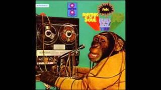 Funk Turco Burçak Tarlaları Campos De Yero De Mustafa Özkent 1973