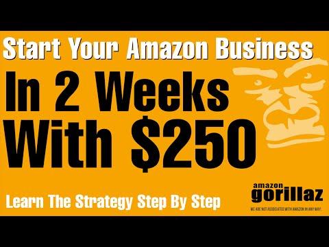 START AN AMAZON FBA PL  Business w/$250 in 2 Weeks! Fast Start Amazon With Kole Imprts