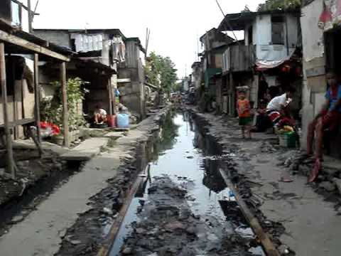 Developing Countries Need to Harness Urbanization to Achieve the MDGs: IMF-World Bank report