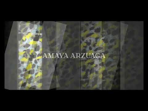 AMAYA ARZUAGA Paris Fashion Show  SS14 Collection