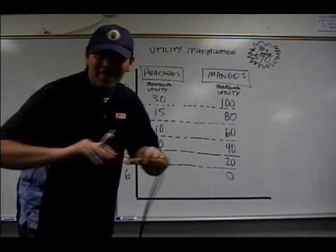 Micro 2.11 Utility Maximization: Econ Concepts in 60 Seconds - Diminishing Marginal Utility