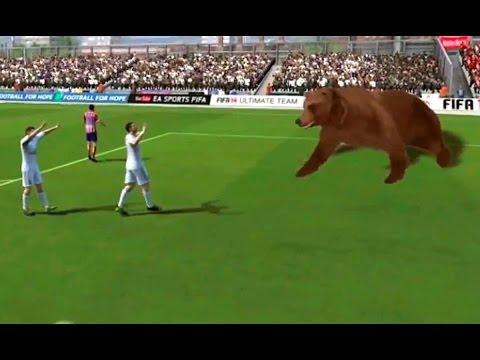 Ronaldo Ayıyı Bayılttı