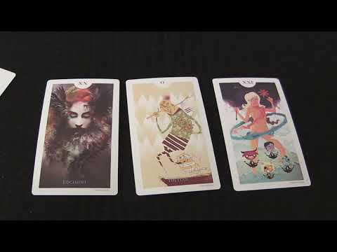 Light Grey Tarot Deck - Review