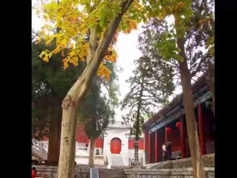 henan travel guides, china travel trip