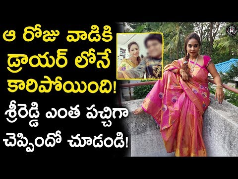 Sri Reddy Reveals Shocking Facts About an Incident in Flight | Celebrity Updates | Telugu Panda