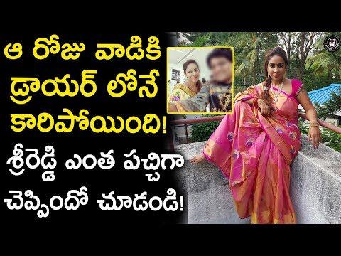 Sri Reddy Reveals Shocking Facts About an Incident in Flight   Celebrity Updates   Telugu Panda