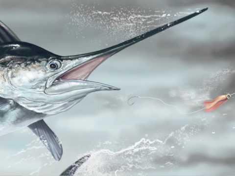 Blue Marlin Paintings Blue Marlin Speed Painting