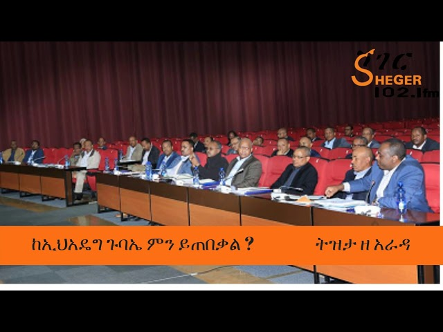 Tizita Ze Arada - What can we expect from EPRDF's General Assembly ?