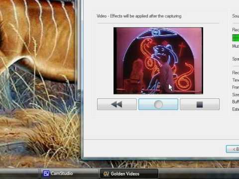 Easycap  - DC60 -  VHS composite capture on 32bit Vista Service Pack 2 with Golden Videos Freeware