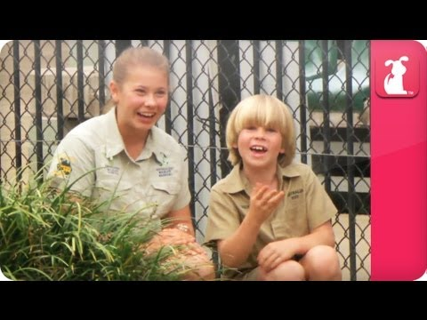Bindi & Robert Irwin feature huge salt-water crocodile - Growing Up Wild
