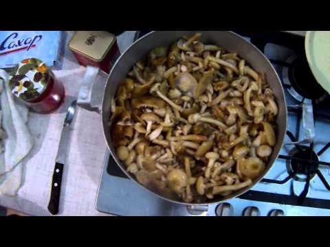 Сварить грибы для заморозки