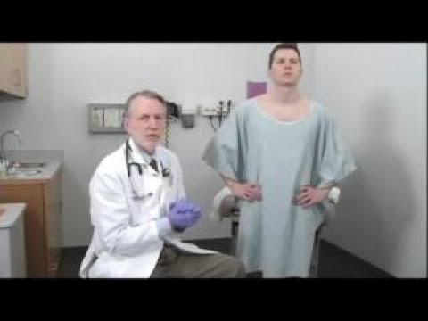 Bates Guide To Physical Examination And History Taking - Masculine Genitalia, Rectum And H thumbnail