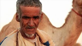 Desert Farms - Camel Milk