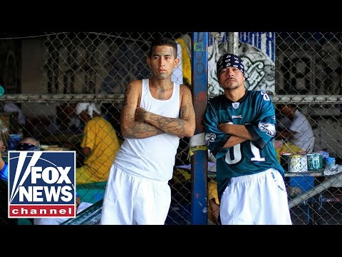Steyn: Liberal media's PR campaign for MS-13