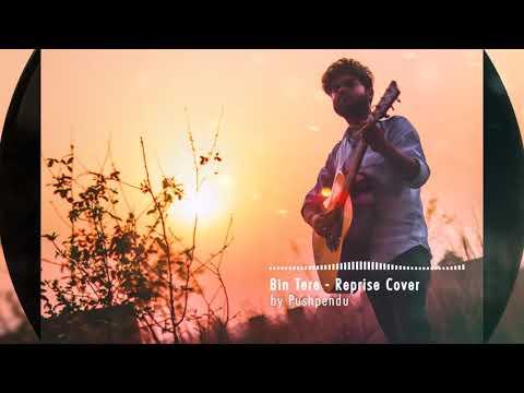Bin Tere - Reprise Cover | I Hate Luv Storys | Vishal - Shekhar | Pushpendu