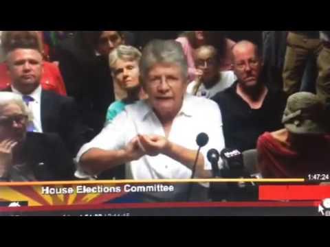 Arizona Poll Worker Diane Post
