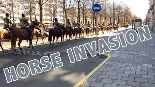 HORSES INVADED THE STREETS!