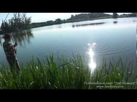 Pыбалка на карпа - ловля карпа на пруду Лыткино 3peskarya.ru