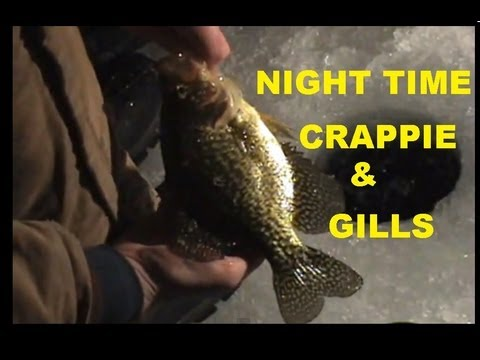 Fall Night Light Crappie Fishing