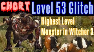 The Witcher 3 - XP Level Up Glitch Exploit - Chort Level 53 Baddest Monster in Witcher 3