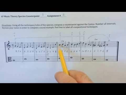 Music Theory: Species Counterpoint 3 Explained