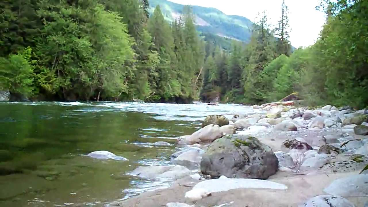 My brother shane fishing in chehalis river youtube for Chehalis river fishing