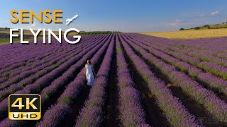 4K Sense of Flying - 1 Hour Relaxing Flight Scenes & Soothing Guitar Music - UHD Aerial Drone Video