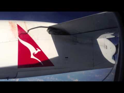 Raw: Footage of python clinging to Qantas flight