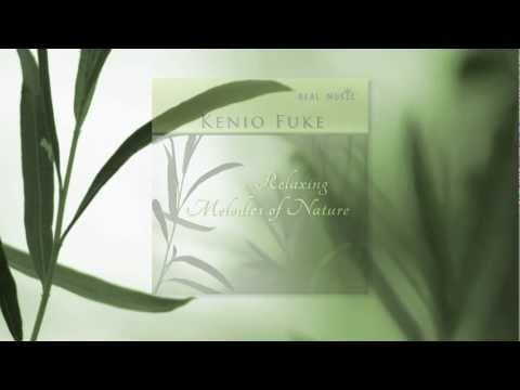 Relaxing Melodies Of Nature ~ Kenio Fuke video