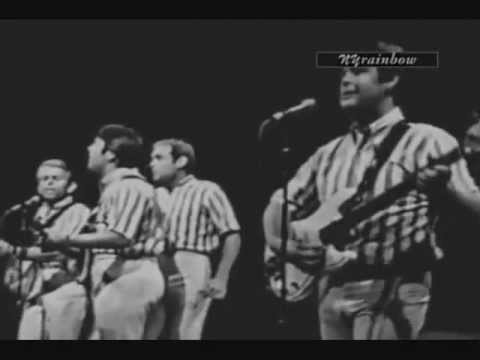 Beach Boys - Please Let Me Wonder