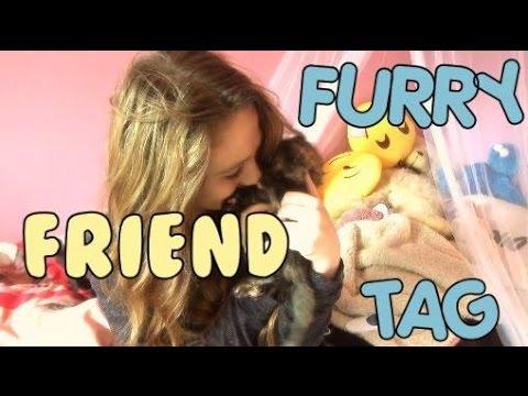 Furry Friend Tag / Bonnie / ItsIssie