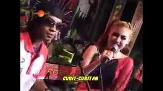 download lagu The Rosta Vol 7 - Cubit  Cubitan - gratis