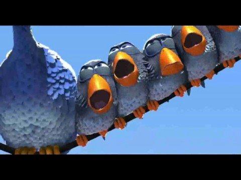 الطيور - فلم قصير