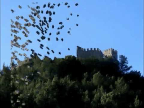 castelo Sesimbra  explode.