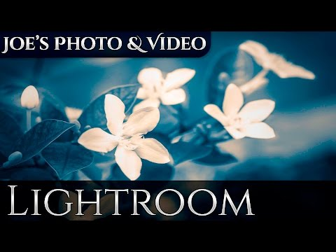 How To Enhance Photos Using Dodge And Burn In Lightroom 5 | Video Tutorial