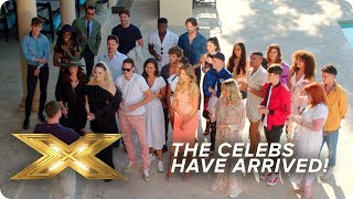 The Celebs Arrive to Face the Music! | X Factor: Celebrity